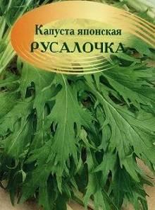 Савойская капуста: выращивание в открытом грунте, фото, посадка и уход, посев на рассаду