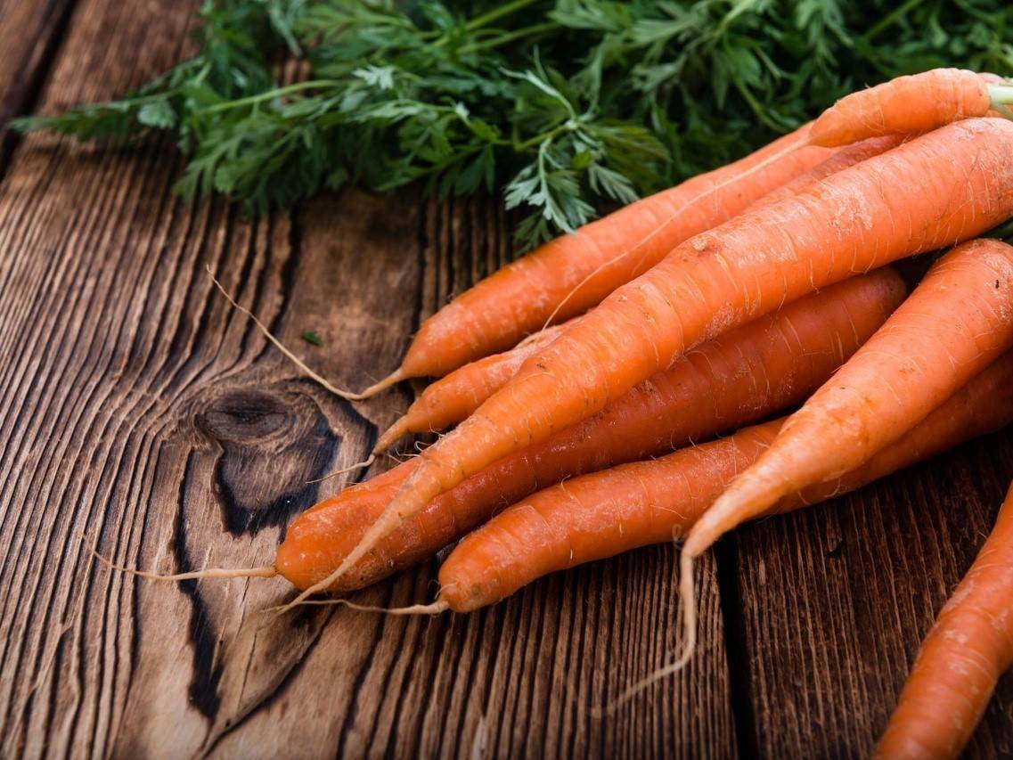 Лучшие сорта моркови для сибири. когда можно сажать корнеплод в регионе и как это сделать правильно?