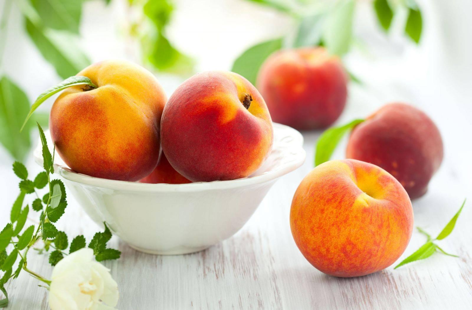 О тле на персике: чем обработать, методы борьбы народными средствами