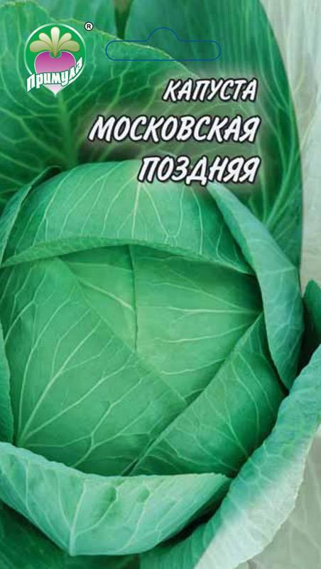Характеристика капусты сорта казачок