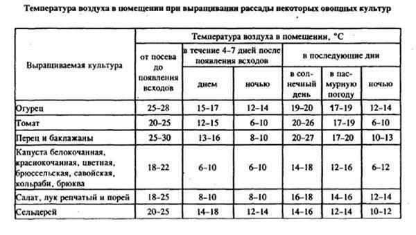 Оптимальная температура в теплице для огурцов: 5 критериев успешного роста