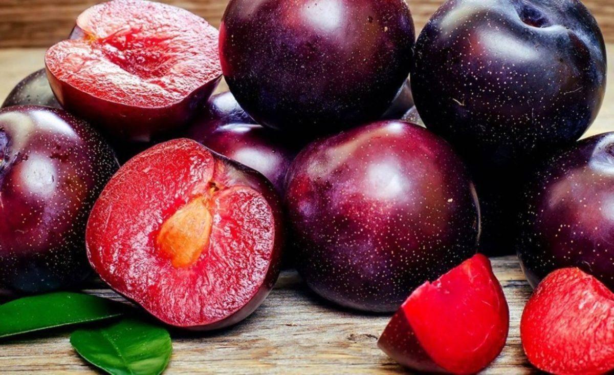 Гибрид из абрикоса и сливы название. гибриды сливы, абрикоса и персика: названия и описание новых фруктов
