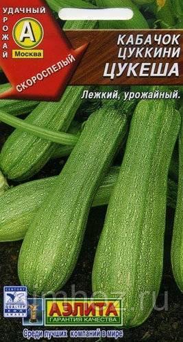Ранний и урожайный кабачок цукеша
