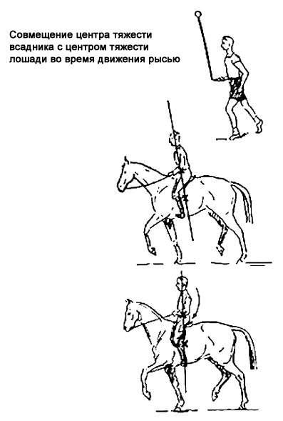 Как научиться правильно ездить верхом на лошади