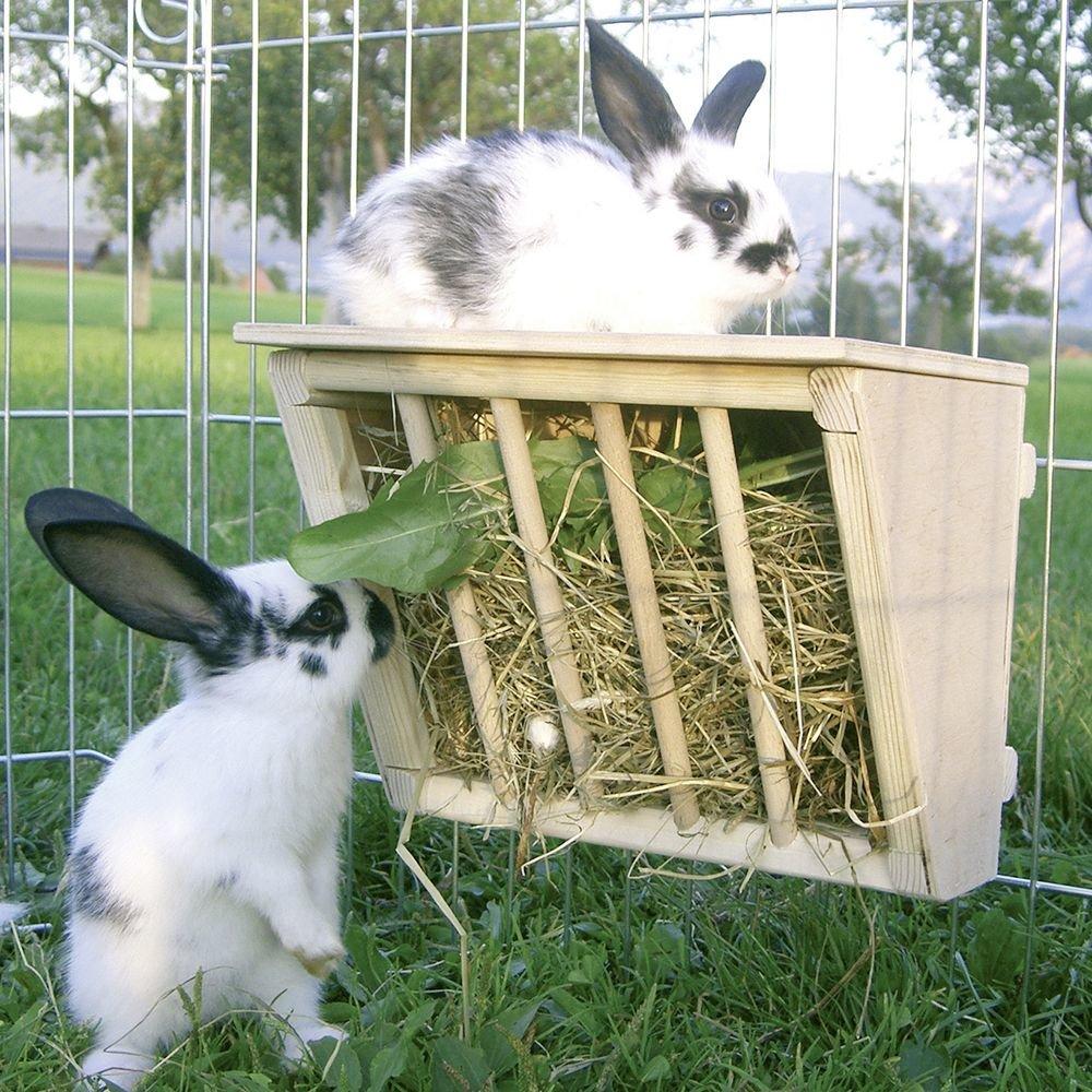 Как сделать кормушку для кроликов – варианты кормушек и советы по изготовлению