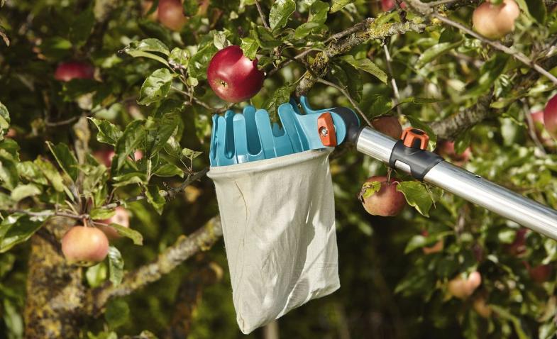 О плодосборниках gardena (гардена): плодосъемник ролл для сбора яблок