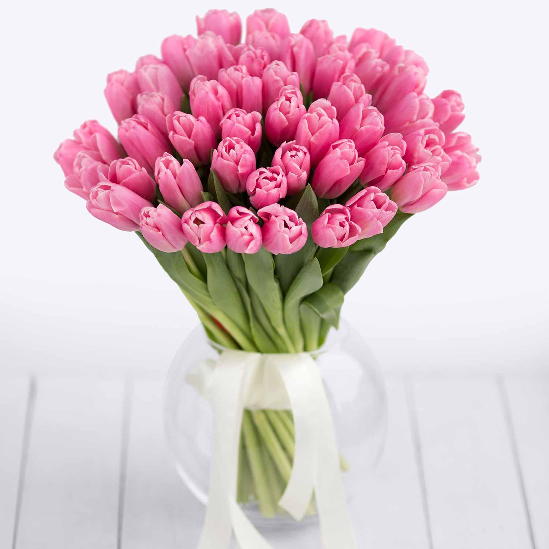 Сорта тюльпанов. фото и названия с описанием
