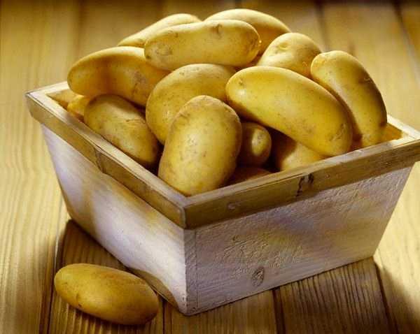 Картофель рамона