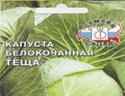Капуста теща — советы по выращиванию одного из самых популярных сортов