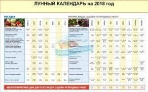 Посадочные дни в мае 2020 года для картофеля по лунному календарю и по регионам: таблица