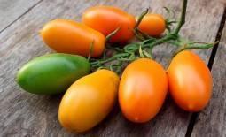 Томат розовоплодный румянец: характеристики, описание, отзывы огородников