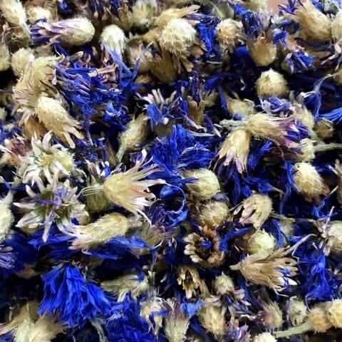 Василек синий и лекарственные свойства этого растения