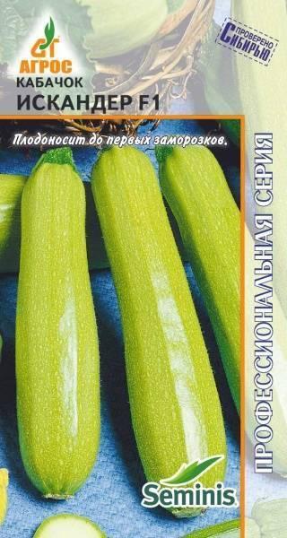 Популярные сорта кабачков: отзывы, описание