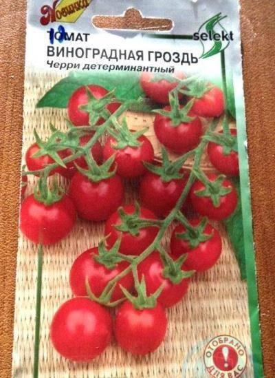 Особенности выращивания, описание, применение помидор сорта «сосулька красная»