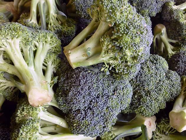 Принцип выращивания брокколи в открытом грунте
