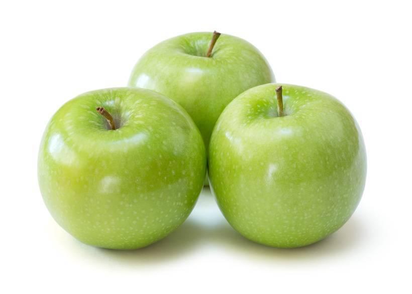 Яблоки семеренко: описание и характеристика зимнего сорта