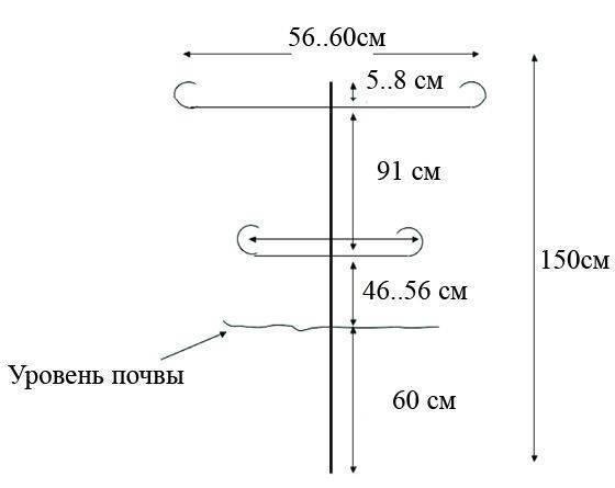 Шпалера для малины: 5 типов и 5 шагов сборки