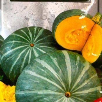 Декоративная тыква: 50 фото,  виды и сорта, как ухаживать и использовать