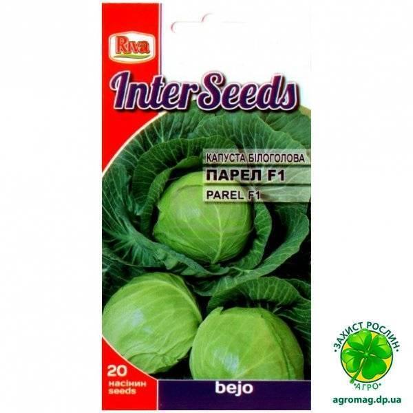 Особенности выращивания капусты нозоми