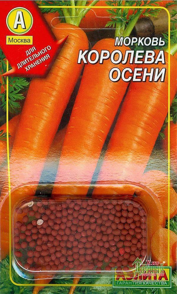 Морковь с поэтичным названием. описание и отзывы о сорте королева осени