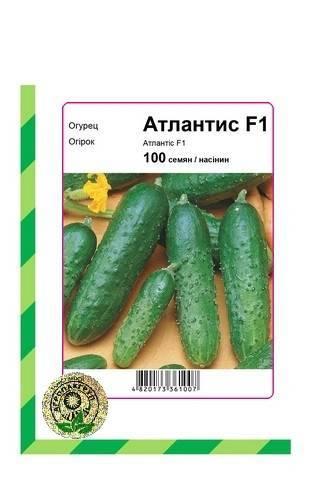 Характеристика и секреты выращивания сорта огурцов «атлантис f1»