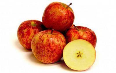 О яблоне Джонатан: описание сорта, характеристики, агротехника, выращивание