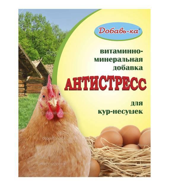 Витамины для кур-несушек для яйценоскости — название препаратов