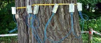 Чем обработать дерево, чтобы засохло - какие препараты помогут