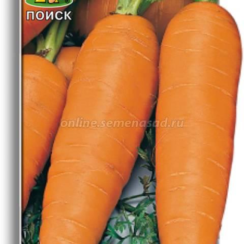 Агротехника выращивания моркови и описание сортов