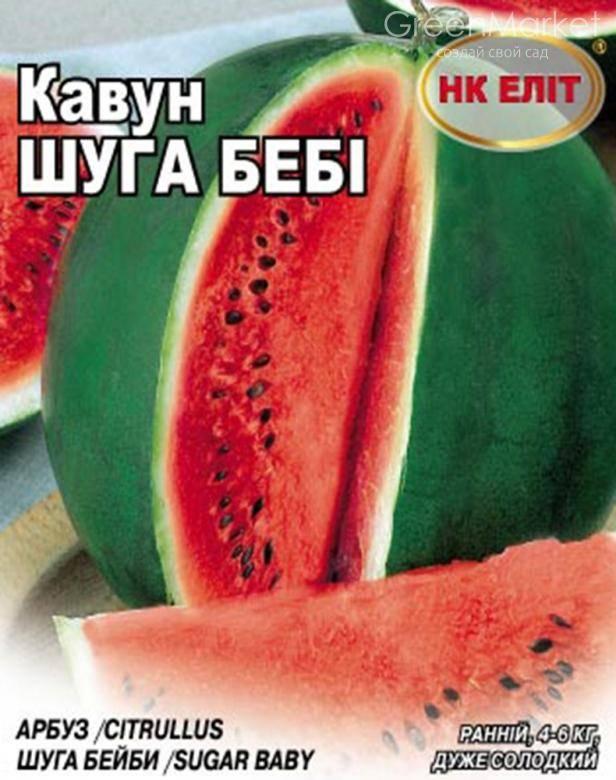 Сорта арбузов – описание лучших