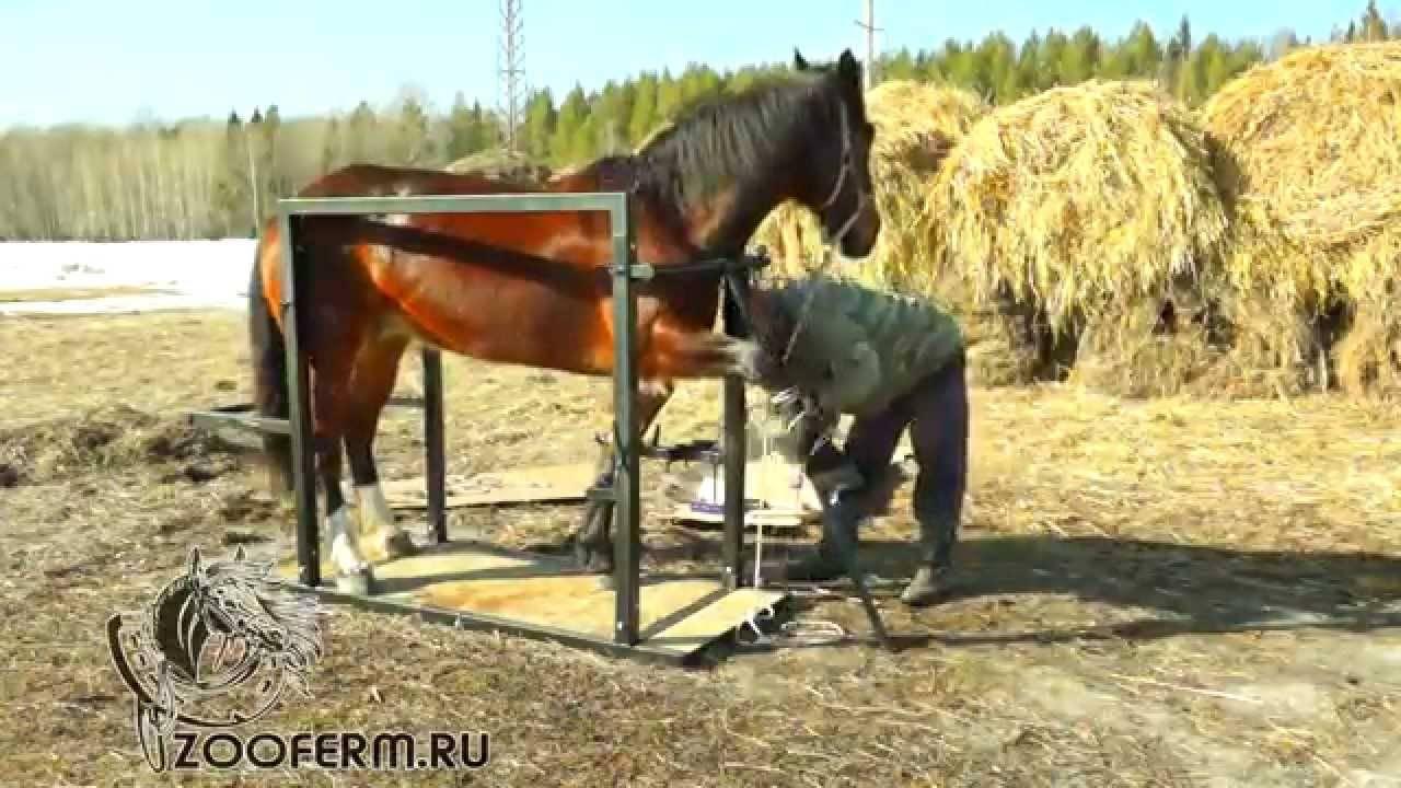Как делают подковы лошадям
