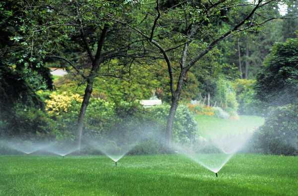 Автоматический полив газона: описание, оборудование, как сделать