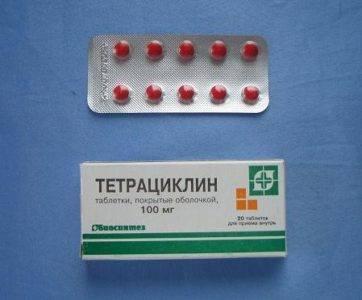 Антибиотики для кур: офлосан, левомицетин, тетрациклин, пенициллин