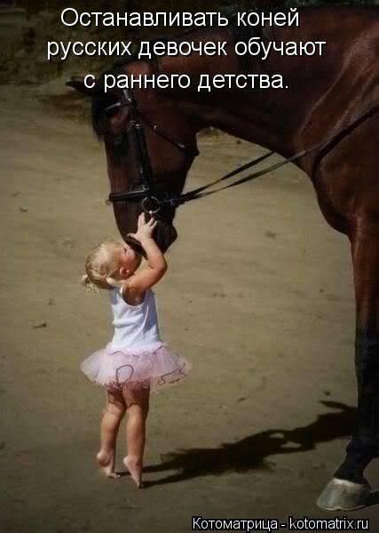 Верховая обучение - horse training