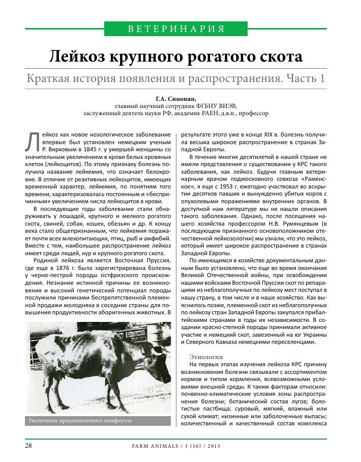 Опасная болезнь коров - лейкоз - общая информация - 2020