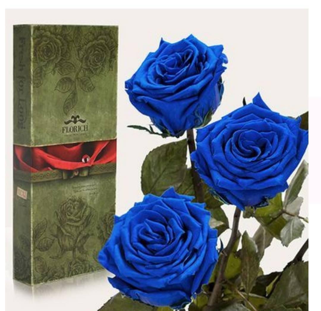 Значение синих роз, преподнесенных в подарок