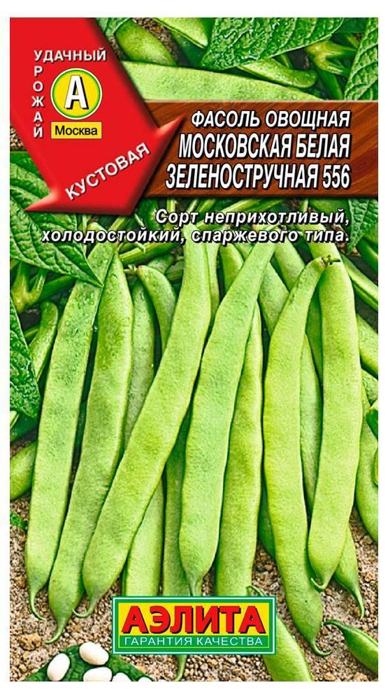 Выращивание белой фасоли: посадка, уход, болезни и вредители