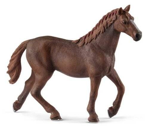 Вершина мирового коннозаводства – английская чистокровная лошадь