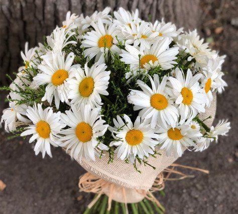 Значение цветов вбукете: очем «говорят» каллы, пионы иеще27 растений