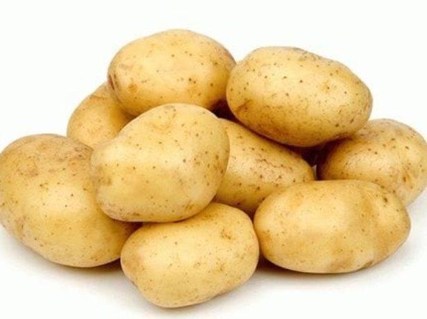 """Картофель """"фермер"""" с подробным описанием сорта, фото, отличительные характеристики"""