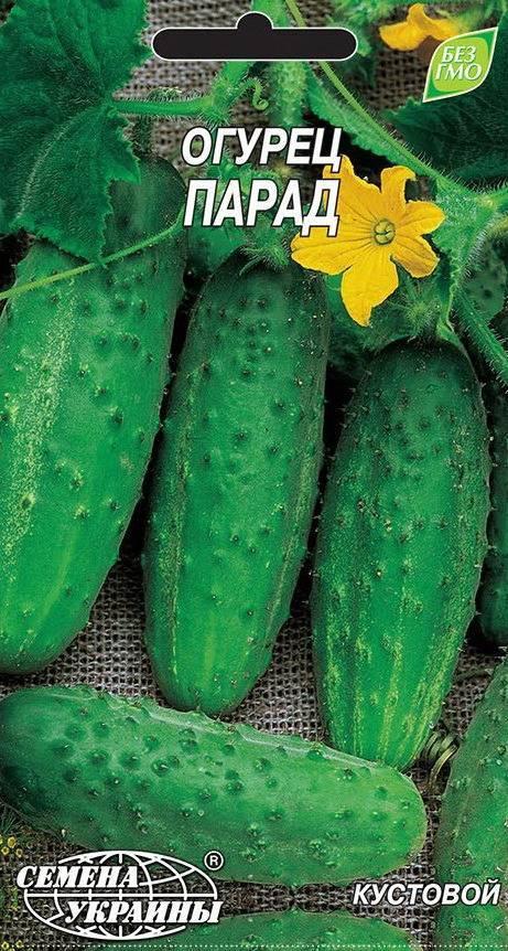 Огурец темп f1: описание, достоинства, технология выращивания, посев семян в грунт, уход за рассадой, агротехника, отзывы