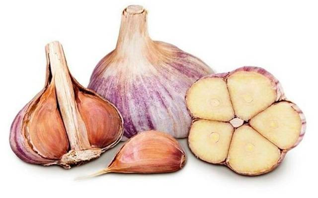 Чеснок - описание, состав, калорийность и пищевая ценность - patee. рецепты
