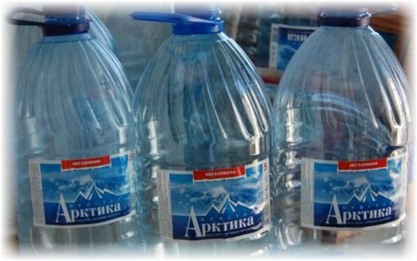 Выращивание огурцов в пластиковых бутылках