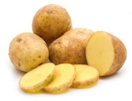 Сорт картофеля гала: характеристика и правила выращивания!