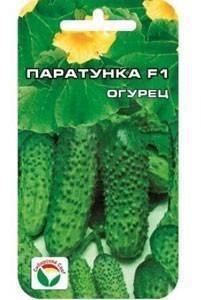 Описание сорта огурцов паратунка выращивание и урожайность