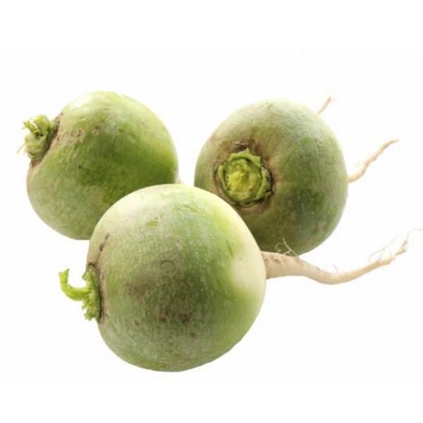 Рецепт редька зеленая со сметаной. калорийность, химический состав и пищевая ценность.