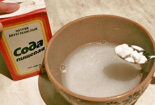 Сода для огурцов — полив и опрыскивание овощей пищевой содой. польза, вред и особенности приготовления раствора (125 фото и видео)