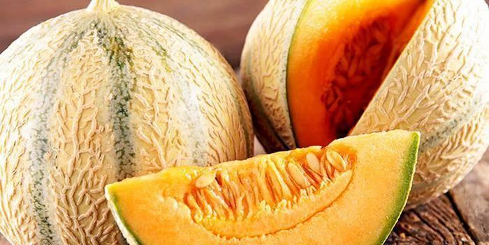 Дыня овощ или фрукт или ягода