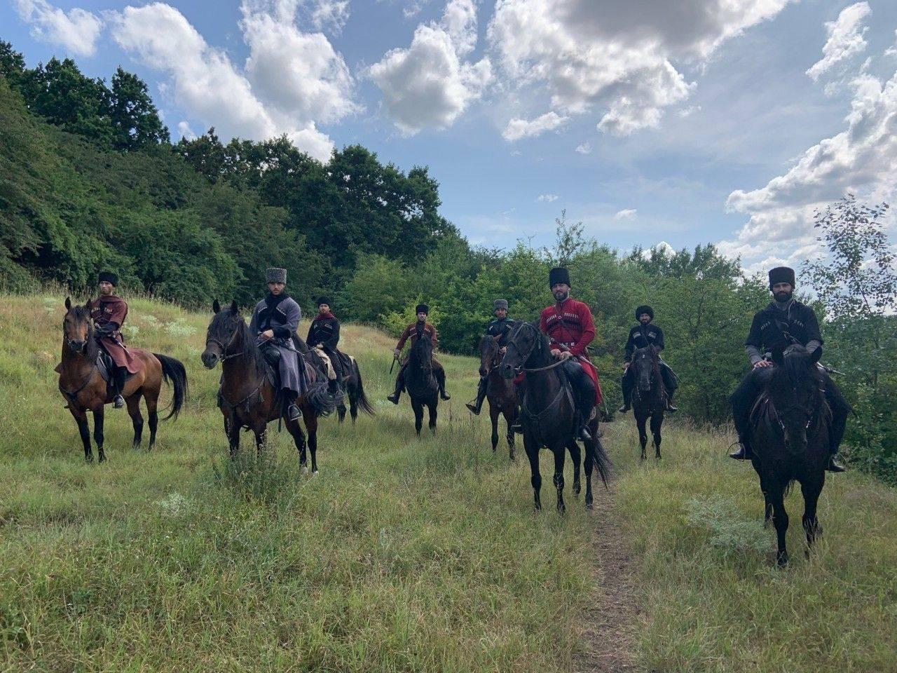 Как запрягать лошадь и разобраться в составе упряжи