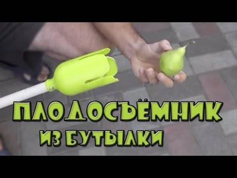 Плодосъемник для яблок